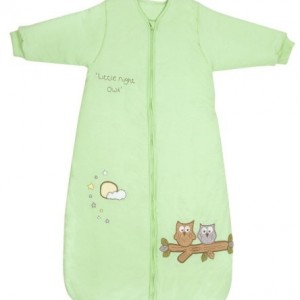 Mint Owl with Sleeves 001